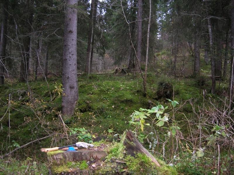 Petite  balade  dans le Jura 02510