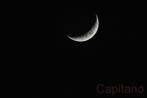 Falce di Luna  Falce_12