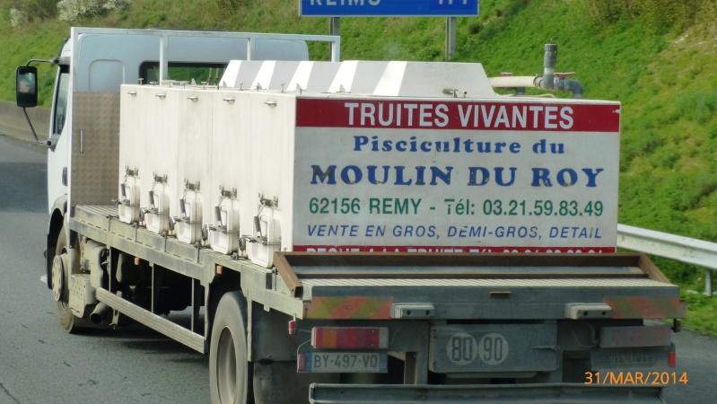 Transport de Poissons vivants Papy_474