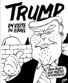 Humour en image - Page 38 Image17