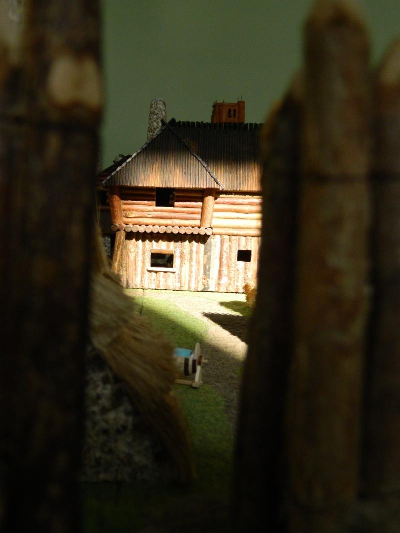 Le Village d'Astérix le Gaulois en maquette au 1/40 - Page 14 Dscn3710