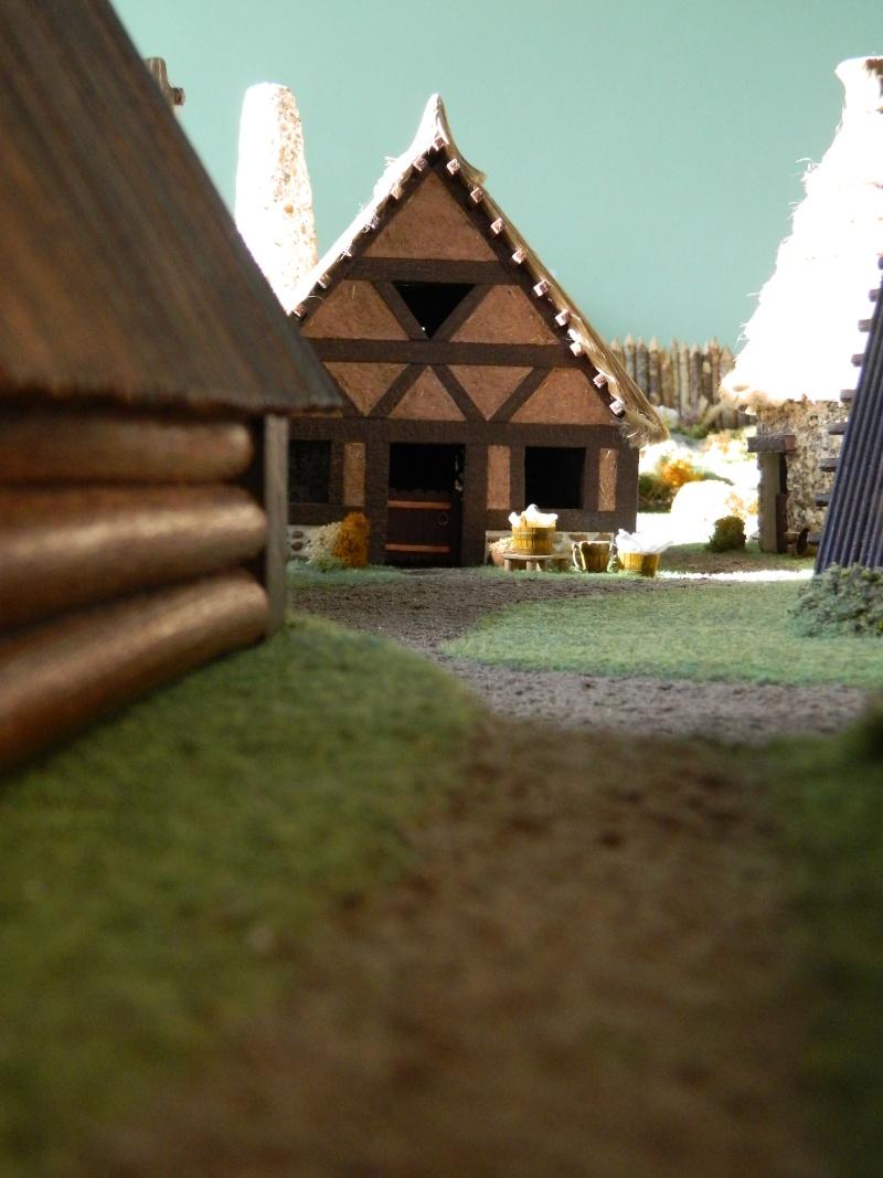 Le Village d'Astérix le Gaulois en maquette au 1/40 - Page 14 Dscn3712