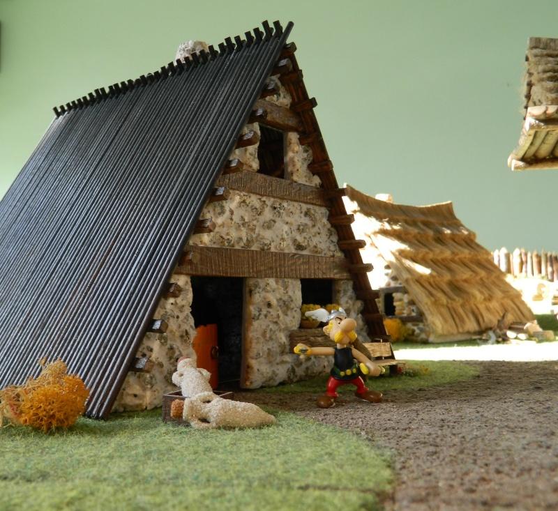 Le Village d'Astérix le Gaulois en maquette au 1/40 - Page 14 Dscn3714