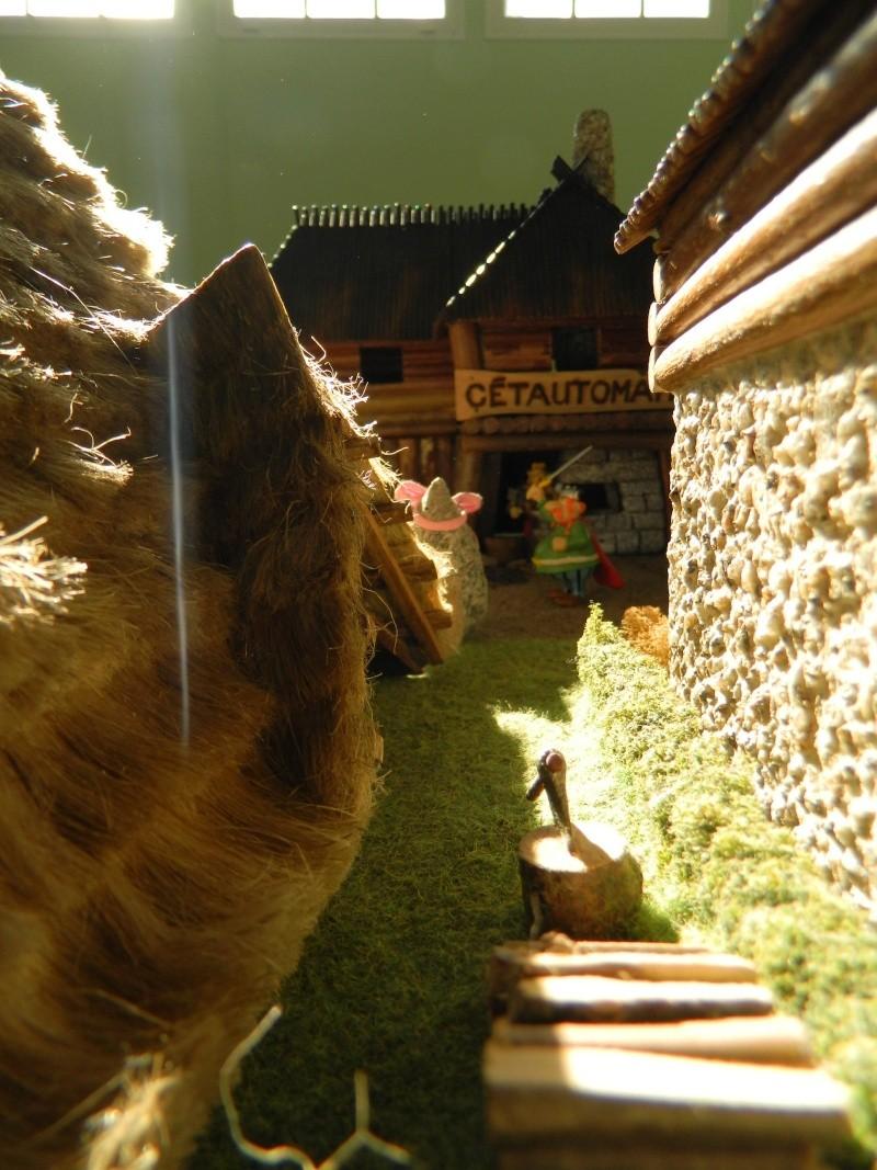 Le Village d'Astérix le Gaulois en maquette au 1/40 - Page 14 Dscn3719