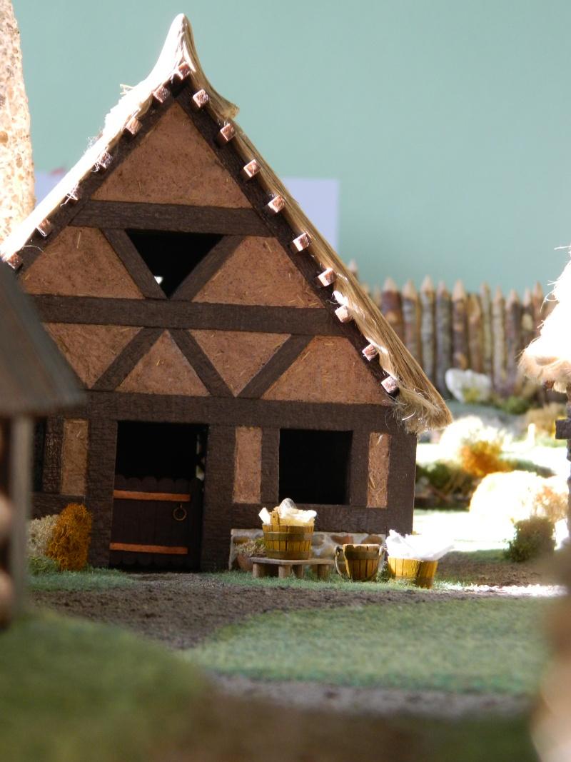 Le Village d'Astérix le Gaulois en maquette au 1/40 - Page 14 Dscn3720