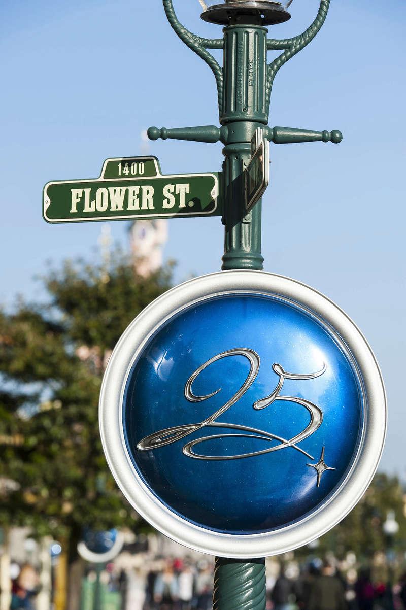 25° Anniversario di Disneyland Paris - Pagina 29 N0255214