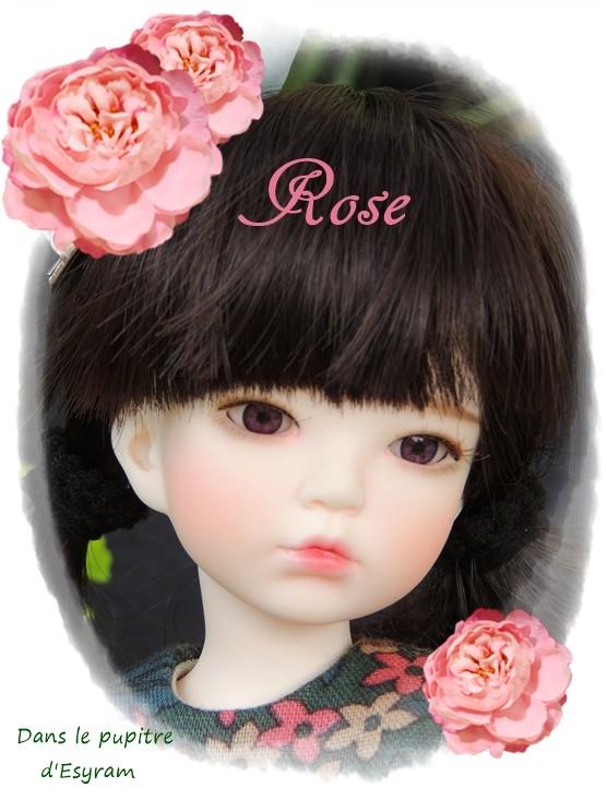 Rose, née Candy de Racoondoll  : L'année du chien ! (page 2 ) 001_le16