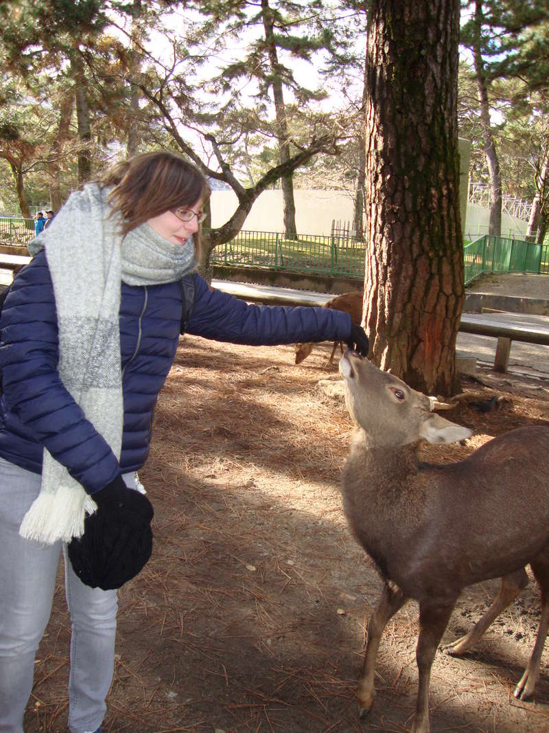 日本に行きましょう ! [Photos] Dsc08617