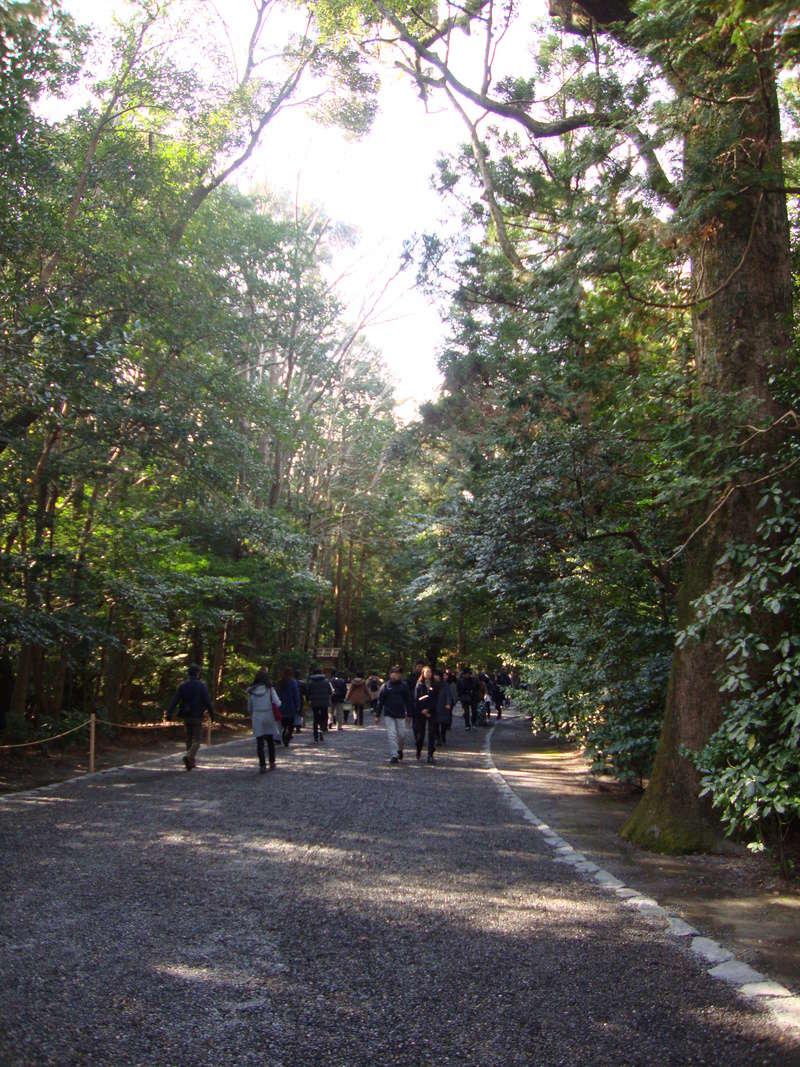 日本に行きましょう ! [Photos] Dsc08813