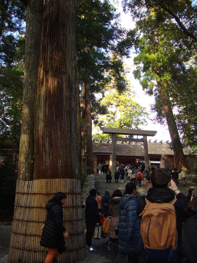 日本に行きましょう ! [Photos] Dsc08817
