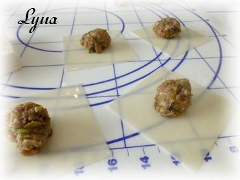 Dim sum Hunan, sauce aux arachides (dumplings) Dumpli12