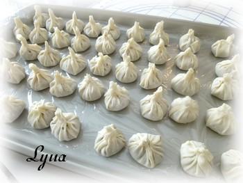 Dim sum Hunan, sauce aux arachides (dumplings) Dumpli13