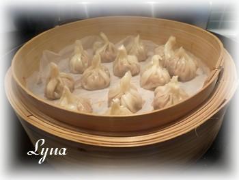 Dim sum Hunan, sauce aux arachides (dumplings) Dumpli14