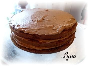 Gâteau au chocolat et lait malté (maltesers) Gateau18