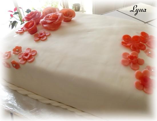 Fondant à la guimauve ou pâte à sucre pour recouvrir ou décorer des gâteaux Gateau24