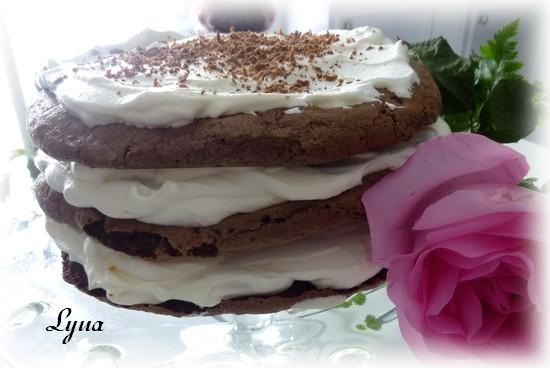 Gâteau meringues au chocolat Gateau25