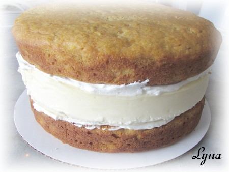 Gâteau aux carottes étagé avec gâteau au fromage Gateau61