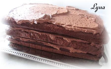 Gros gâteau au chocolat pour 25 personnes et plus Gros_g11