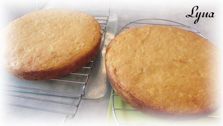 Gâteau aux carottes étagé avec gâteau au fromage Gyteau11