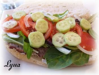 Kebab doner maison sur pain Turc Kebab310