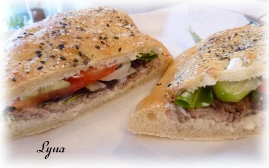 Kebab doner maison sur pain Turc Kebab410
