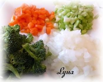 Nouilles Udon au boeuf et légumes Nouill12