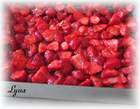 Pouding aux fruits facile avec gâteau des anges Poudin10