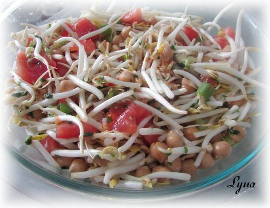 Salade de pois chiche et fèves germées Salade20