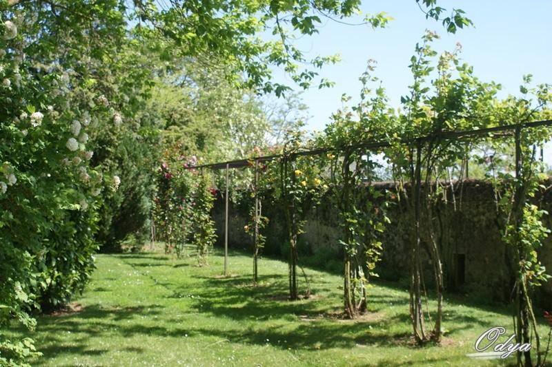 Parc Foulon  ( 49 )Doué la Fontaine Dsc04815