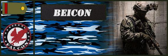 OPERACION OVERLORD(MIERCOLES 14 DE JUNIO A LAS 22:00 PENINSULA) Beicon11