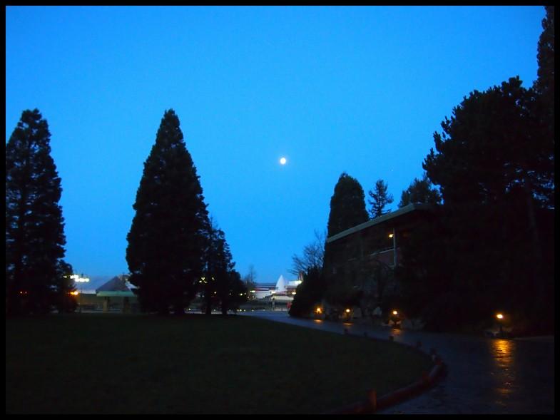 Un séjour magique à la découverte du parc pour Noël + Réveillon du jour de l'an + TR du 8/9 Mars + Rencontre magique au DLH (Fini) - Page 5 Photo301