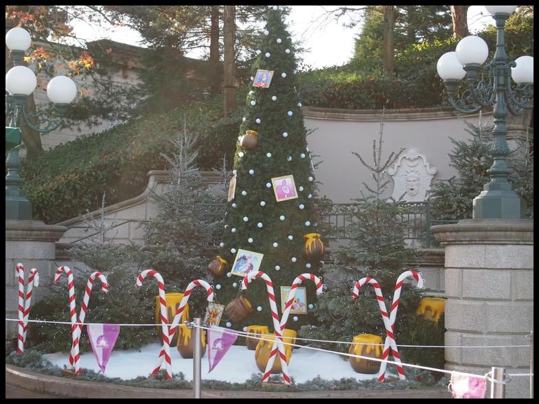 Un séjour magique à la découverte du parc pour Noël + Réveillon du jour de l'an + TR du 8/9 Mars + Rencontre magique au DLH (Fini) - Page 6 Photo402