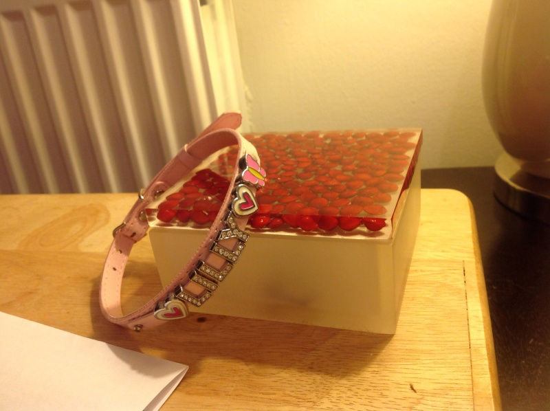 16.  Pink 'Lilly' Collar Image_18