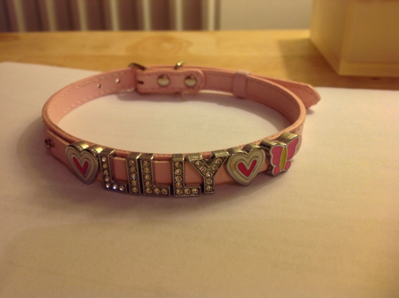 16.  Pink 'Lilly' Collar Image_19
