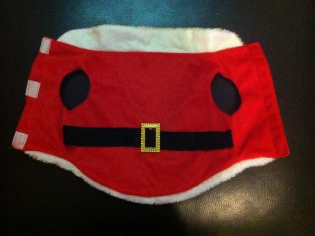 108.  Santa Dog Coat Img_2610