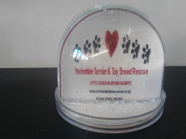 113.  Glitter Globe -  **NEW REDUCED STARTING BID!!!!!** P2311110