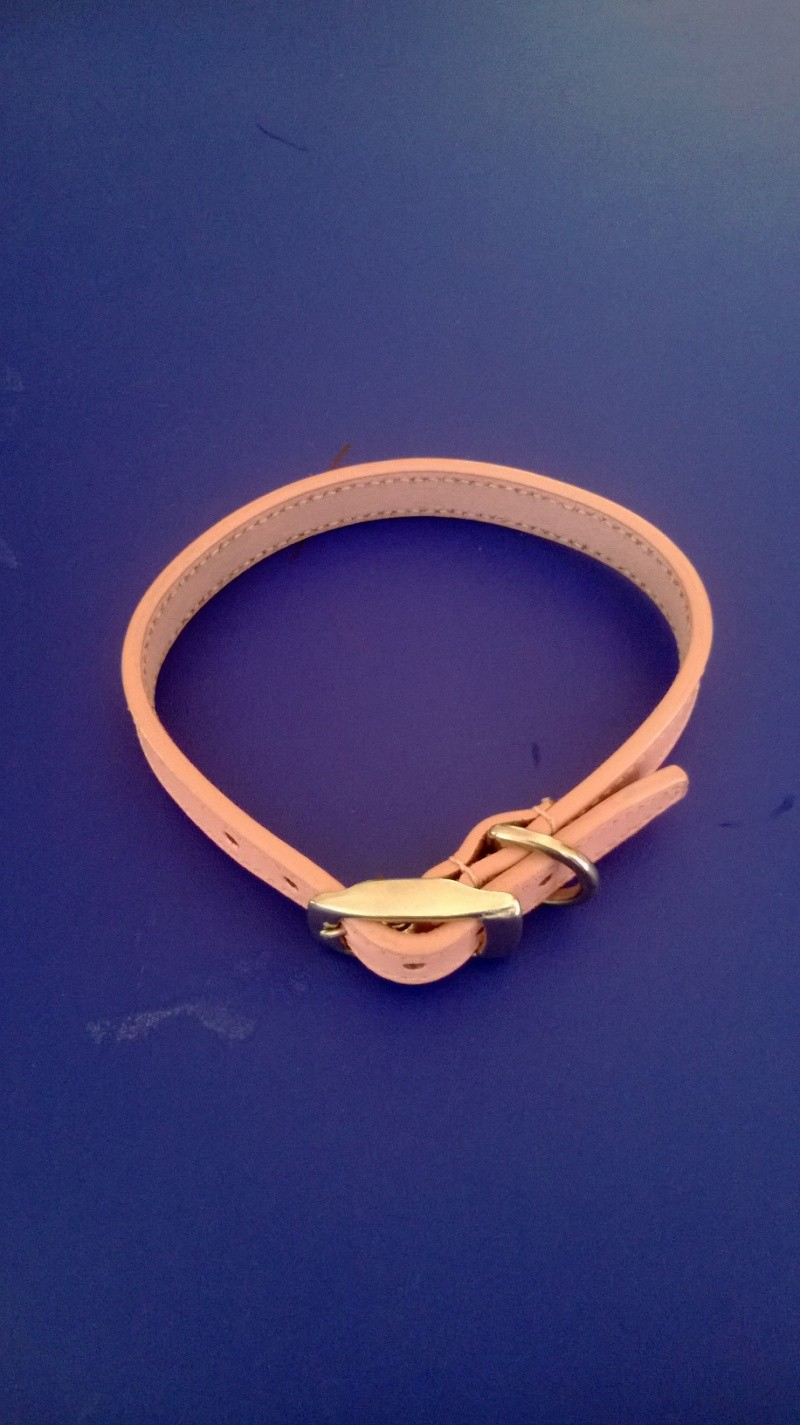 19.  Pretty Pink Leather Collar Wp_20110