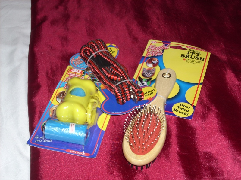 20.  Dog Set - Brush, Lead and Bags X_00110