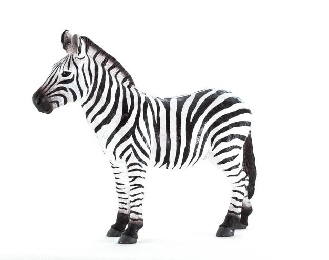 New for Mojo Fun 2014: Zebra 38716910