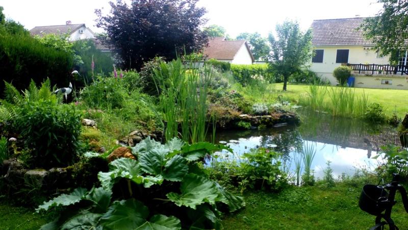 Que faire en Juin au jardin ? P1110513