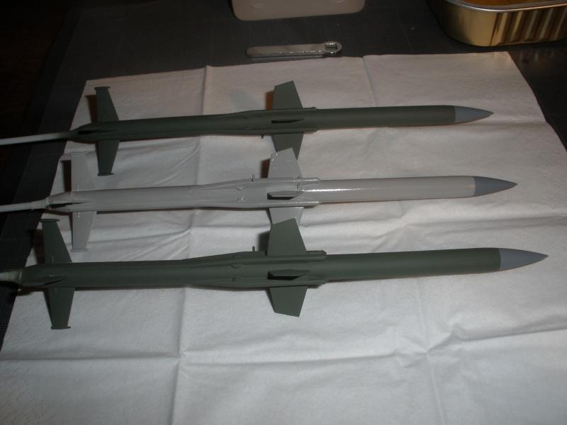 Montage SA-6 'Gainful' Pb210214
