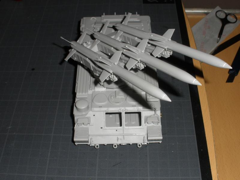 Montage SA-6 'Gainful' Pb250113