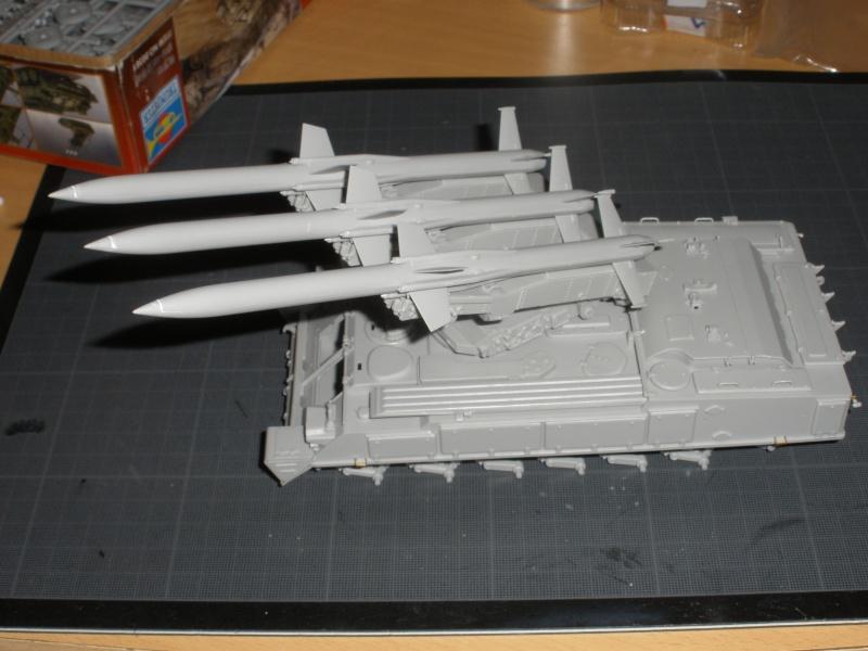 Montage SA-6 'Gainful' Pb250115