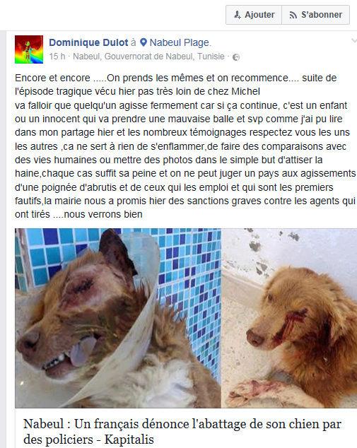 MASSACRES à CIEL OUVERT en Tunisie - Page 3 Massac11