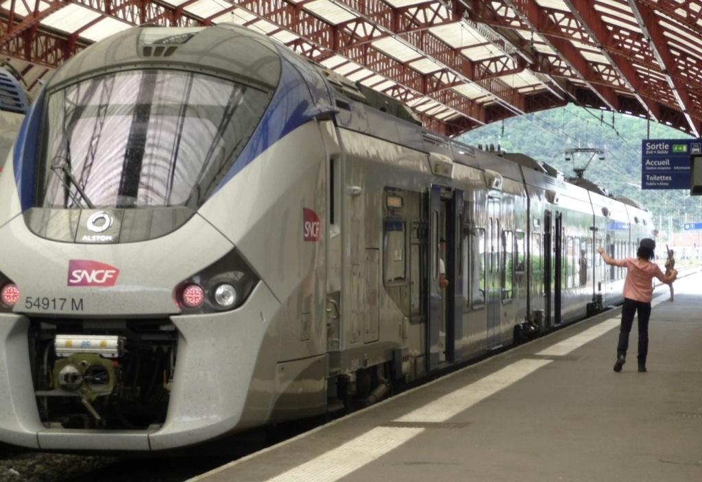 Pk 082,2 : Gare de Foix (09) - 2017 : Chantier devant ! Latour13