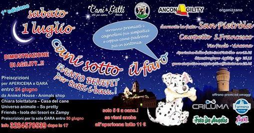 cani sotto il faro - evento BENEFIT per tutti i bau..!!  Cani10