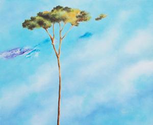 """""""Back to Nature"""": rassegna di pittura alla Saletta Corte dell'Angelo di Lucca Corti_10"""