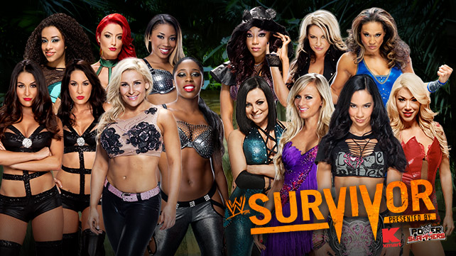 WWE Survivor Series du 24/11/2013 _light10