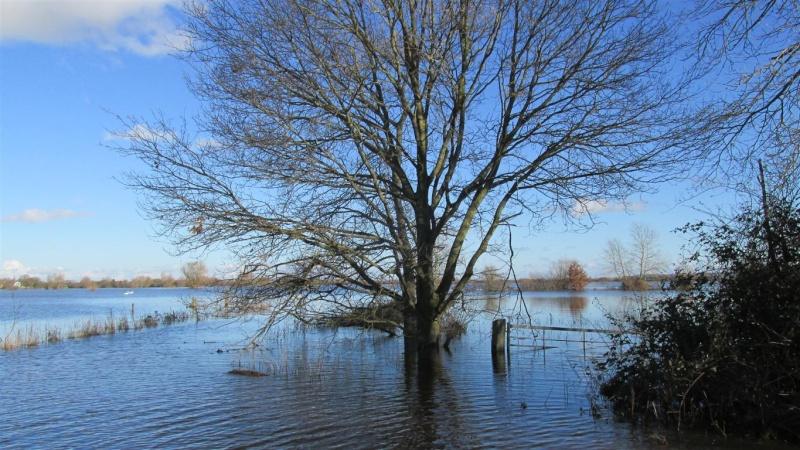 Floods!! Img_1311