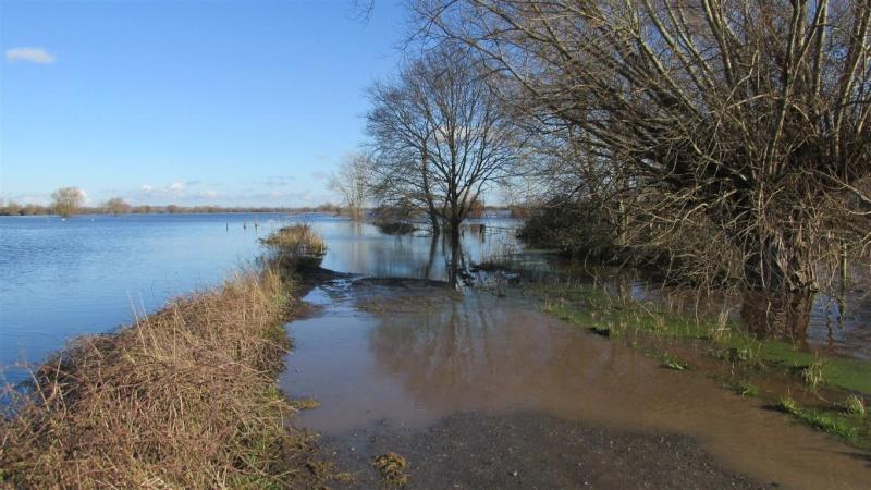 Floods!! Img_1410